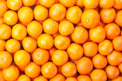 Tangerines as the background Royalty Free Stock Photo
