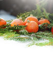 Tangerines as Fir-tree Toy on Branch, isolated on white Royalty Free Stock Photography