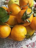 tangerines, autumn harvest tangerines, fresh from a branch royalty free stock image