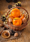 Tangerines in a basket Stock Image