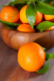 Tangerines in a bowl Royalty Free Stock Photography