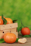 Tangerines in a box Royalty Free Stock Photos