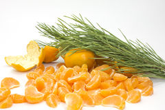 Tangerines with branch Stock Photography