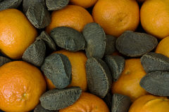 Tangerines and brazil nuts. Tangerines and brazil nuts mixed together Royalty Free Stock Photos
