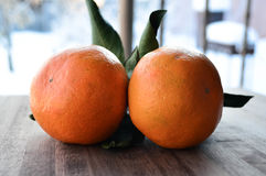 Tangerines bright orange snow Royalty Free Stock Photo