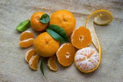 Bright orange tangerines clementines whole and peeled with the rind on a burlap background.Mandarin or clementine oranges, dark stock photography