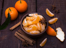 Tangerines with cinnamon stick and anisetree Stock Image