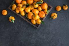 Tangerines clementines zdjęcia royalty free