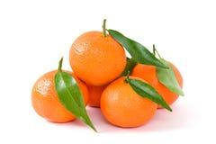 Tangerines com folhas Foto de Stock Royalty Free