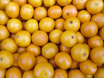 Tangerines on a counter Royalty Free Stock Images