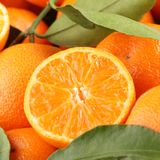 Tangerines Stock Photo