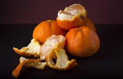 Tangerines on dark background Stock Images