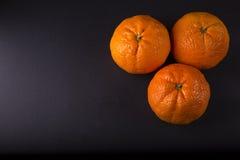 Tangerines on dark background Royalty Free Stock Image