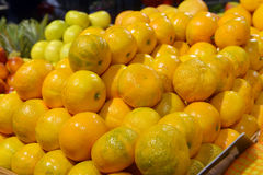 Tangerines on display Royalty Free Stock Photo
