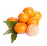 Tangerines doces Fotografia de Stock Royalty Free