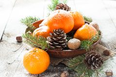 Tangerines, fir tree, pine cones and nuts. Christmas food decorations Royalty Free Stock Photo