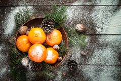 Tangerines, fir tree, pinecones and nuts. Christmas food decorations. Royalty Free Stock Photography