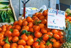 Tangerines in a food market. Orange tangerines in a food market with a tag in Pavia, a city in the north of Italy Royalty Free Stock Photography