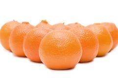 Tangerines frescos Imagens de Stock