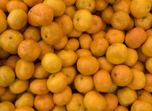 Tangerines Fresh tangerines for sale Stock Images