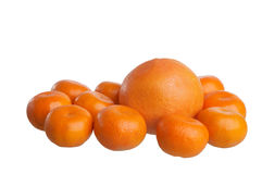 Tangerines and grapefruit Royalty Free Stock Photo