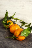 Tangerines on gray napkin. Wooden background. Tangerines with green leaves on gray rough napkin. Wooden background Stock Images