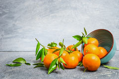 Tangerines with green leaves and bowl on rustic background Stock Image