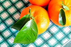 Tangerines with green leaves on a checkered tablecloth. Close up on organic tangerines with green leaves on checkered tablecloth from above Royalty Free Stock Photography