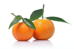 Tangerines with green leaves isolated on white Royalty Free Stock Photography