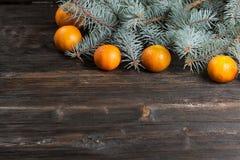 Tangerines i świerczyna Boże Narodzenia zdjęcia royalty free