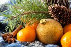 Tangerines i cynamon obrazy royalty free