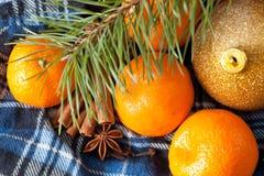 Tangerines i cynamon obraz stock