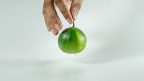 Tangerines i plasterki na hands/pomarańczach z witaminą C obraz stock