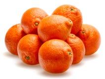 Tangerines isolados de encontro ao fundo branco Imagem de Stock