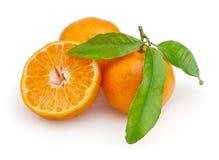 Tangerines isolados no fundo branco Fotos de Stock Royalty Free
