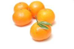 Tangerines isolados no fundo branco Imagens de Stock Royalty Free