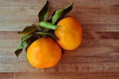 Tangerines jaskrawy pomarańczowy śnieg Obraz Royalty Free