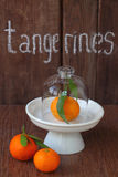 Tangerines with leaflets Stock Image
