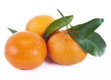 Tangerines with leafs Royalty Free Stock Photography