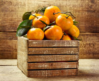 Tangerines with leafs in wooden box Stock Photography