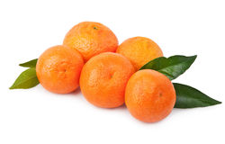 Tangerines with leaves . Stock Image