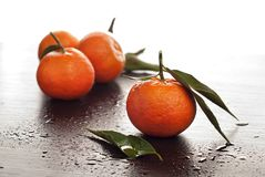 Tangerines with leaves Royalty Free Stock Photos