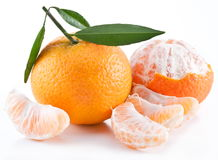 Tangerines with leaves. Stock Photography