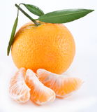 Tangerines with leaves. Stock Photos