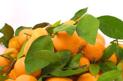 Tangerines with leaves from above Stock Images