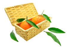 Tangerines with leaves in a basket. Two tangerines with leaves in a basket isolated on white background Royalty Free Stock Photos