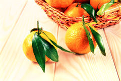 Tangerines with leaves in the basket. On the table Stock Images