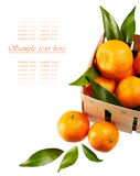 Tangerines with leaves in basket  on white background Stock Photography