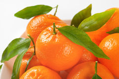 Tangerines with leaves Stock Photo