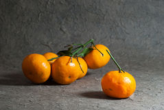 Tangerines with leaves on the gray background. Stock Photography
